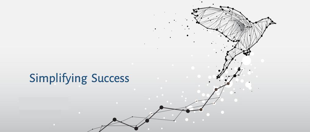 simplifying success